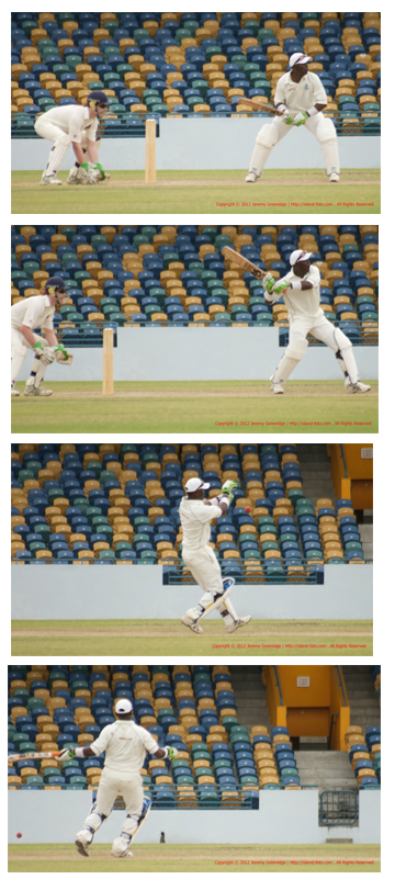 The Dance of a Cricketer